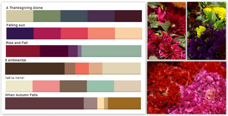 Fall colors palettes – Pennock Floral