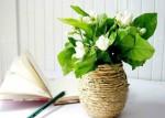 Craft Vases http://bit.ly/11Gxlzj
