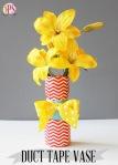 Craft Vases http://bit.ly/Wci8CL