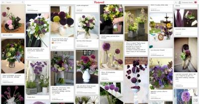 Allium Pinterest