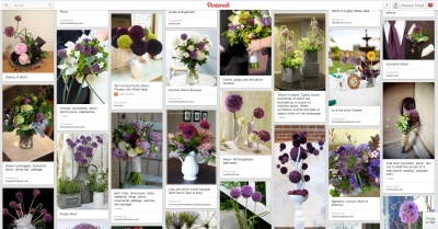 Allium Pinterest